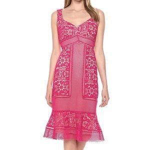 JAX Women's Midi Lace Sheath Dress, hot Pink, 6  W